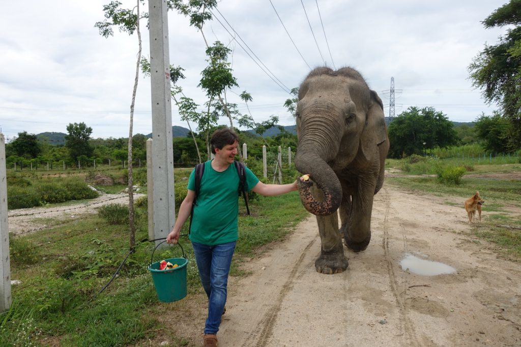 Un giorno al Wildlife Friends Foundation Thailand